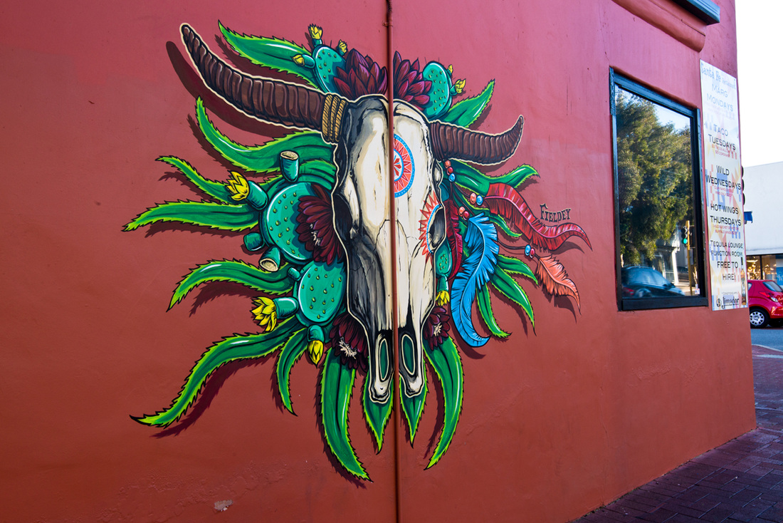 Finished street art wall mural in Subiaco, Perth